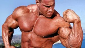 Pravila za povećanje mišićne mase