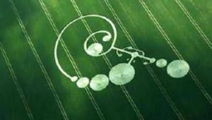 Krugovi u žitu
